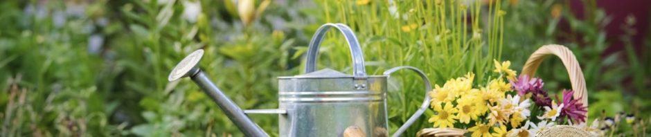 seguro de hogar jardin
