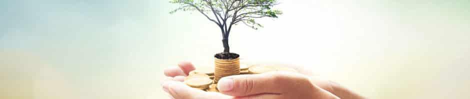 Beneficios de transformar el patrimonio en renta vitalicia asegurada