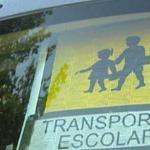 Sobre seguridad y el uso del cinturón en el transporte escolar