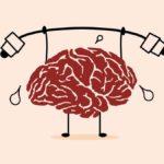 El ejercicio no solo es bueno para tu corazón, sino también para tu cerebro