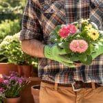 ¿Sabías que la jardinería mejora tu salud física y mental?