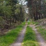 ¿Caminar o correr para perder peso? Aquí tienes la respuesta
