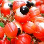 3 frutas que pueden ayudarte a adelgazar
