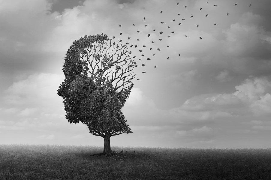 Factores de riesgo de la demencia y pautas de prevención oms