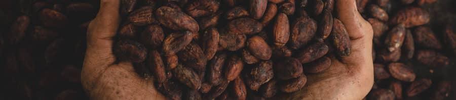 chocolate negro bueno para la salud del corazon